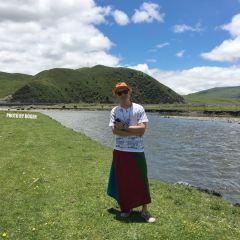 타궁초원 여행 사진