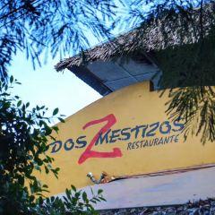 Dos Mestizos User Photo