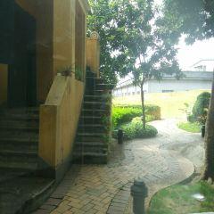 로버트 호퉁 경의 도서관 여행 사진