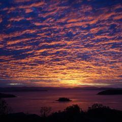 Hamilton Island User Photo