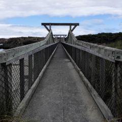 Foreshore Promenade User Photo