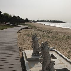 Middle Beach User Photo