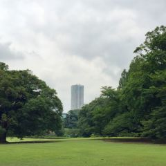 Shinjuku Gyoen National Garden User Photo