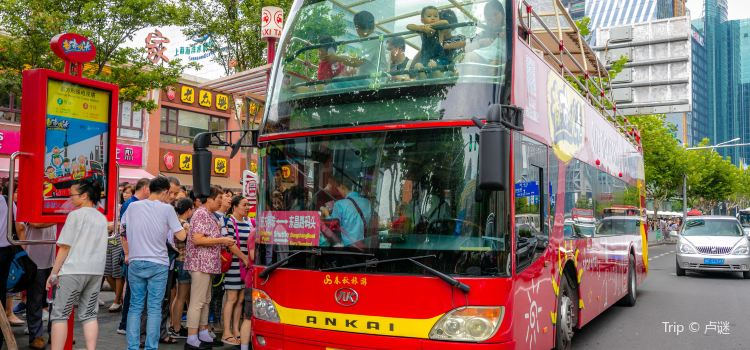 City Sightseeing Tour Bus1