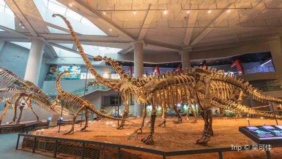重慶自然博物館(新館)