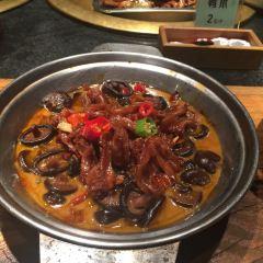 Lao Ma Tu Cai Guan·Di Dao Hui Cai User Photo