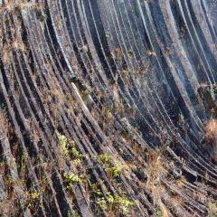火山地熱國家地質公園用戶圖片