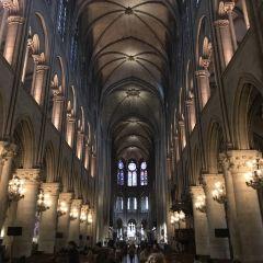 파리 노트르담 대성당 여행 사진
