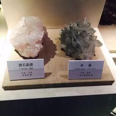 다롄 자연박물관 여행 사진