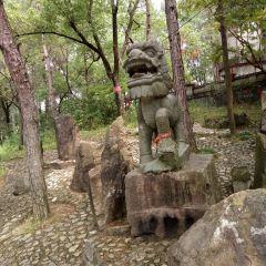 중화 양생 단계 문화원 여행 사진