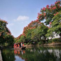 링취 여행 사진