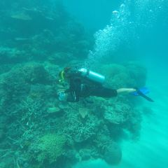 Great Barrier Reef User Photo