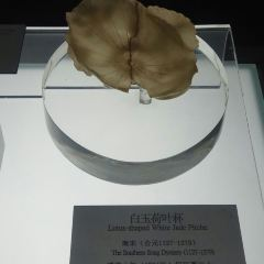 衢州博物館用戶圖片