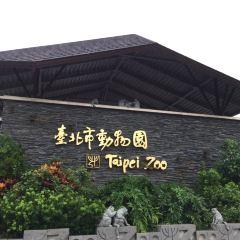 Taipei Zoo User Photo