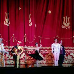 美國芭蕾舞劇團用戶圖片