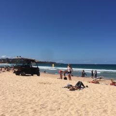 Manly Beach User Photo