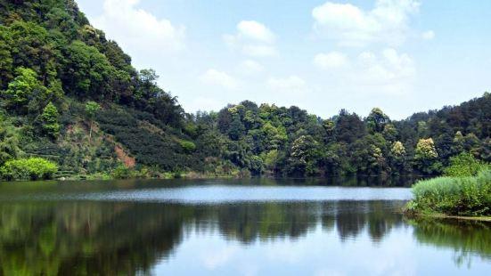 蒲江縣朝陽湖白鷺生態自然保護區