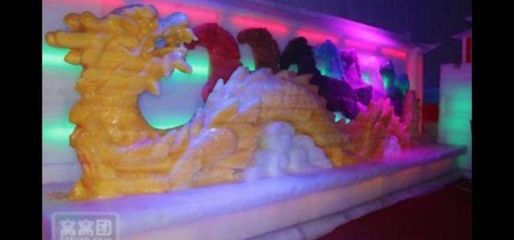 Handan Ice Sculpture and Lotus Flower Expo1