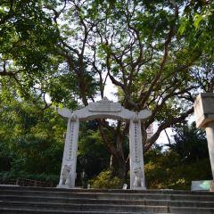 Hong Kong Zoological And Botanical Gardens User Photo