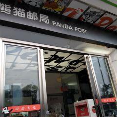 팬더 테마 우체국 여행 사진
