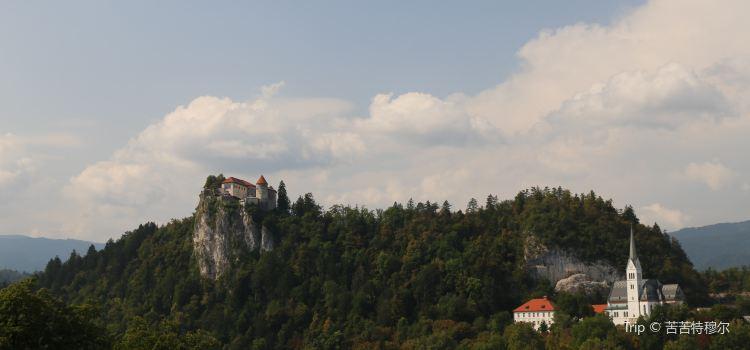 Bled Castle (Blejski Grad)1