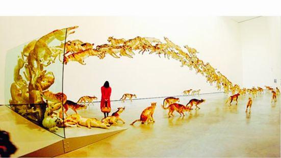 國際當代藝術展