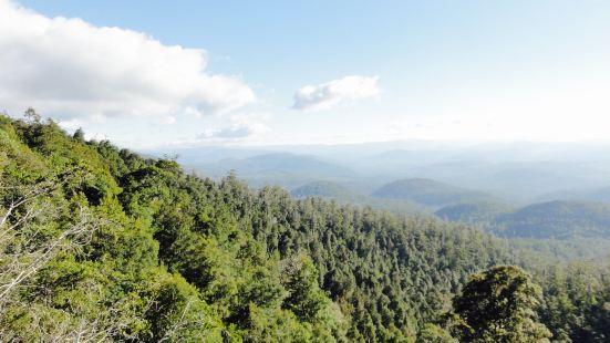 Hartz Mountains National Park