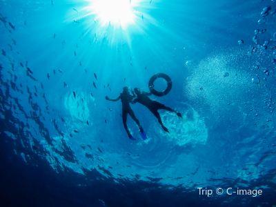分界洲島潛水