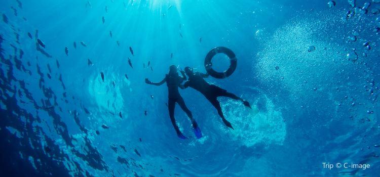分界洲島潛水1