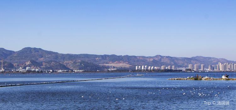 海埂大壩3