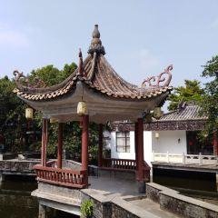 Shunde Bijiangyin Old Park User Photo