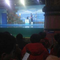 웨이팡 환러 해저 월드 여행 사진