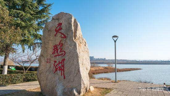 天鵝湖國家城市濕地公園