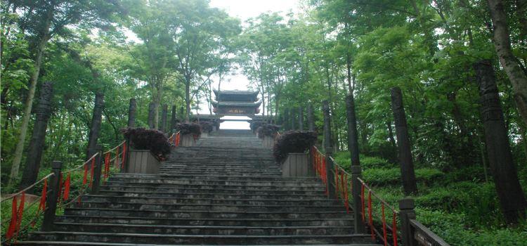 南華山神鳳文化景區1