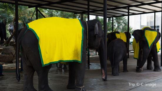 暹羅大象廣場