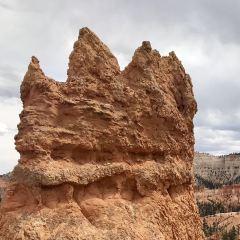 Navajo Trail User Photo