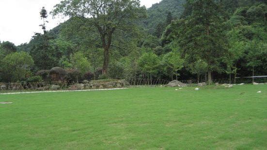 仙姑大草坪