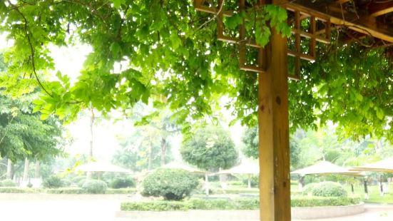 Donghu Wetland Park