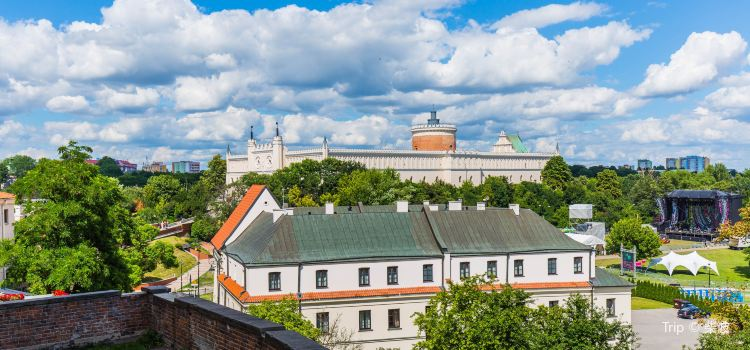 The Castle of Lublin2
