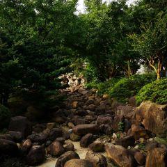 City Park User Photo