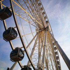 Seattle Great Wheel User Photo