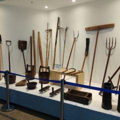 Yancheng Minsu Dongtai Museum User Photo