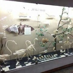 Museum of Osteology用戶圖片