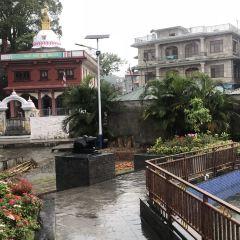 Shree Gaden Dhargay Ling Monastery User Photo