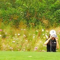 Tianjin Binhai Forest Golf Club (Northwest Gate) User Photo