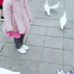 漢中中央廣場用戶圖片