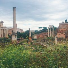 Roman Forum User Photo