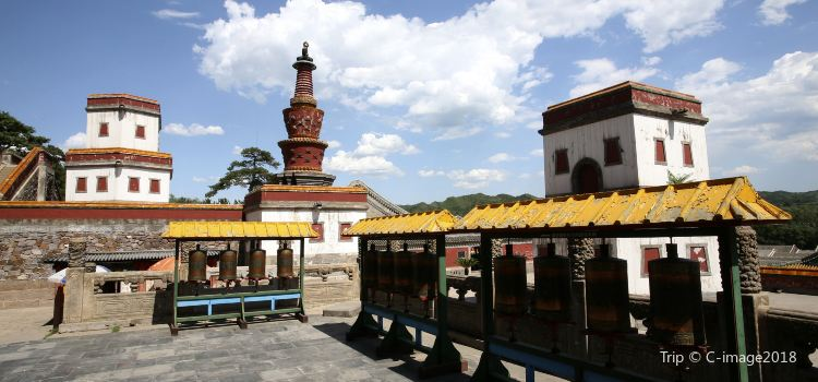 Puning Temple3