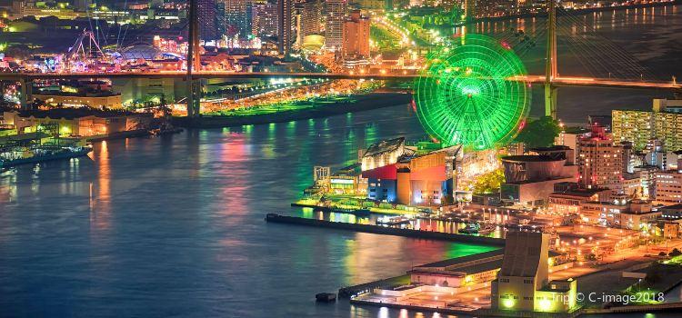 Tempozan Giant Ferris Wheel1