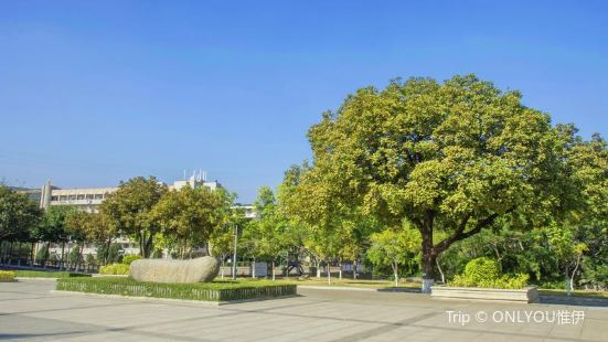 Liaochengzhi Square